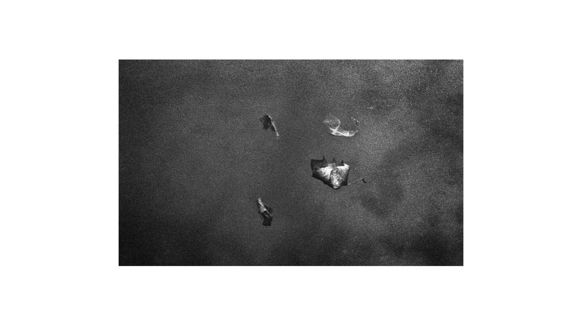 Roam road, photographie Nadim Zeraia - Nos Films